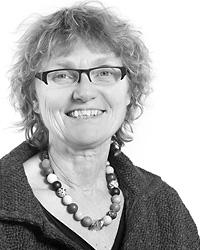 Advokat Hanne Sølgaard, Advokatfirmaet Sølgaard og Knudsen